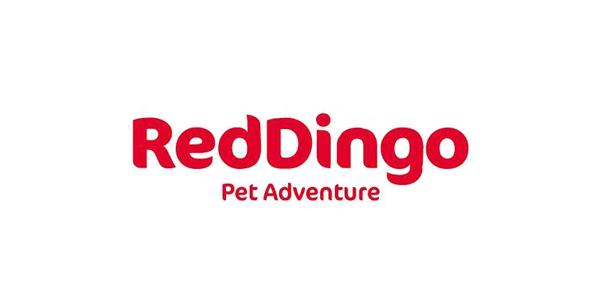 HDX customer cooperation :  RedDingo
